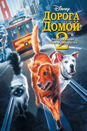 Фильм «Дорога домой 2: Затерянные в Сан-Франциско» (1996)
