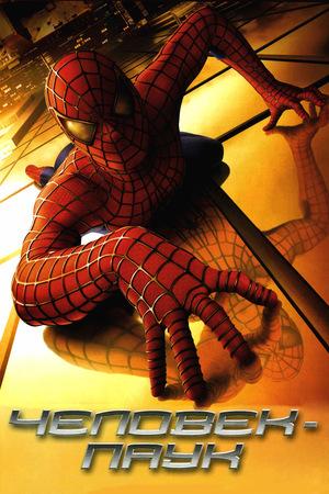 Фильм «Человек-паук» (2002)