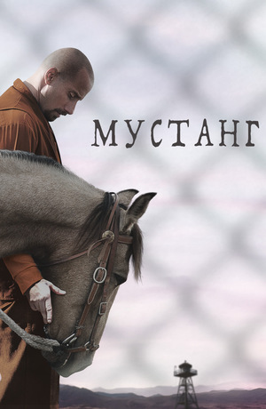 Фильм «Мустанг» (2017)