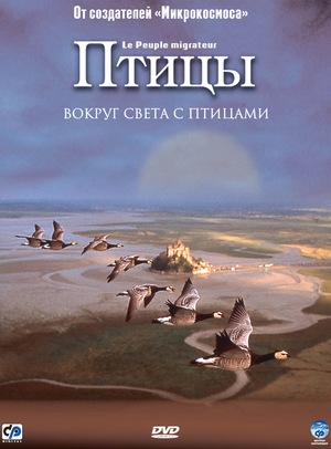 Фильм «Птицы» (2001)