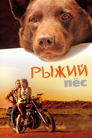 Фильм «Рыжий пес» (2011)