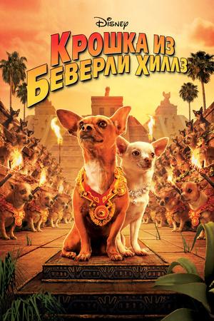Фильм «Крошка из Беверли-Хиллз» (2008)
