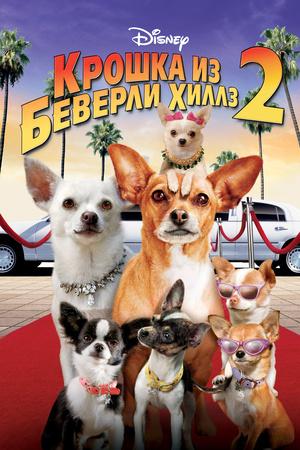 Фильм «Крошка из Беверли-Хиллз 2» (2010)