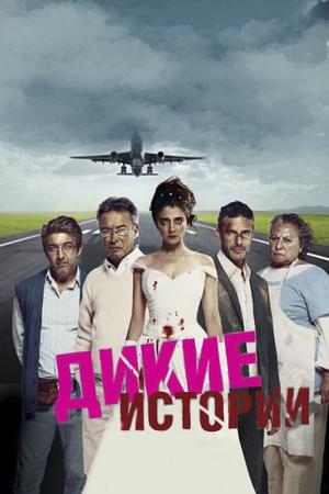 Фильм «Дикие истории» (2014)