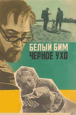 Фильм «Белый Бим Черное ухо» (1976)
