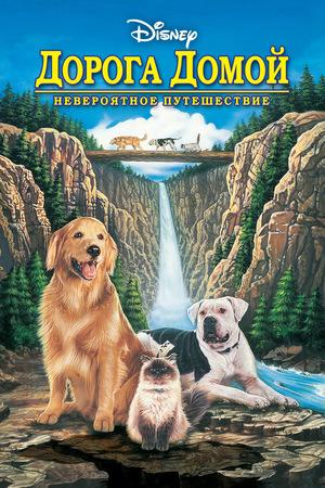 Фильм «Дорога домой: Невероятное путешествие» (1993)