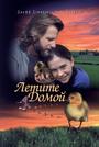 Фильм «Летите домой» (1996)