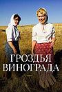 Сериал «Гроздья винограда» (2020)
