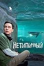 Сериал «Нетипичный» (2017 – 2021)