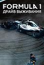 Сериал «Formula 1: Драйв выживания» (2019 – ...)