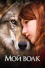 Фильм «Мой волк» (2021)