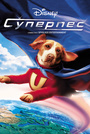 Фильм «Суперпес» (2007)