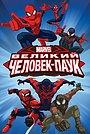 Сериал «Великий Человек-паук» (2012 – 2017)