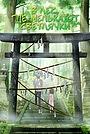 Аниме «В лес, где мелькают светлячки» (2011)