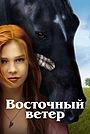 Фильм «Восточный ветер» (2013)