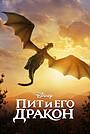 Фильм «Пит и его дракон» (2016)